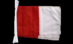 Cordata Irlanda Westmeath - 30 x 45 cm