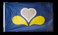 Bandiera Belgio Bruxelles capitale nuovo