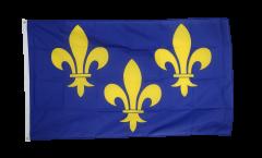Bandiera Francia Ile de France stemma giglio