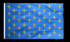 Bandiera Francia stemma giglio, blu