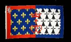 Bandiera Francia Loira