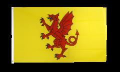 Bandiera Regno Unito Somerset nuovo
