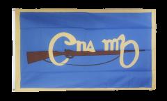 Bandiera Irlanda Cumann na mBan