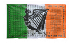 Bandiera Irlanda Ireland Soldiers