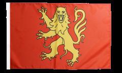 Bandiera Francia Aveyron con orlo