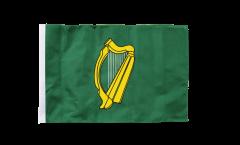 Bandiera Irlanda Leinster con orlo