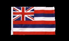 Bandiera USA Hawaii con orlo