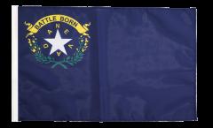 Bandiera USA Nevada con orlo