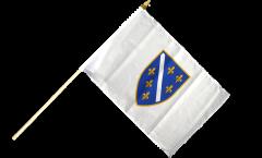 Bandiera da asta Bosnia vecchia 1992-1998