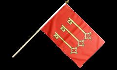 Bandiera da asta Francia Avignone
